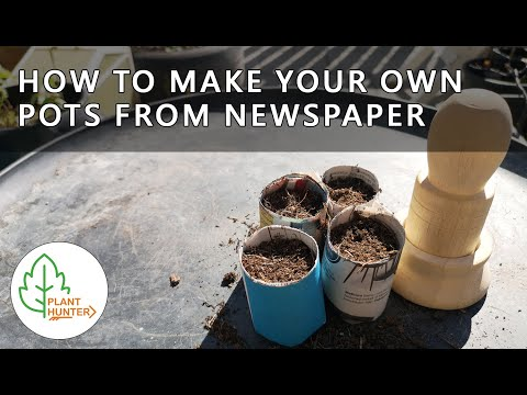 How I make my own pots for growing herbs and vegetables 🌱🌶🌺🌲